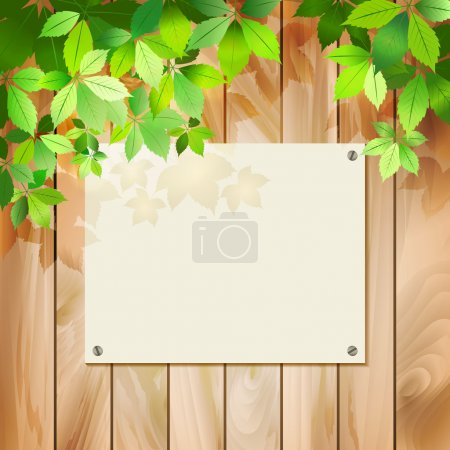 Green leaves on a wood texture. Vector spring or summer environmental background with tree branches, sunlight coming through the leaves, drop shadow on a wall, wooden textured fence, blank sign board