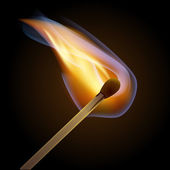Match bursting to flame eps10 vector illustration