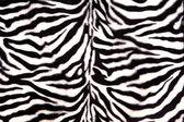 motif zèbre noir et blanc