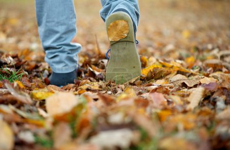 Photo for Close up male shoes walking on fall leaves outdoors - Royalty Free Image
