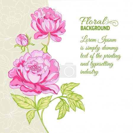 Pink peonies background with sample text. Vector i...