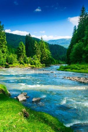 Photo pour Paysage avec des arbres de montagne et une rivière en face - image libre de droit