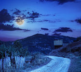 mountain road near the coniferous forest with cloudy night sky