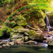 Incredibly beautiful and clean little waterfall wi...