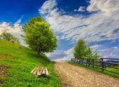fence on hillside meadow in mountain