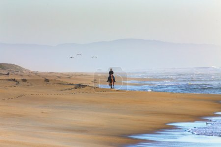 Woman Riding Horse on the Beach at Sunset