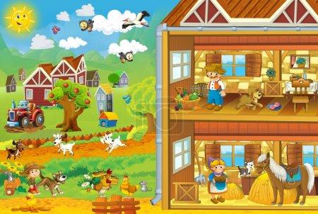 The life on the farm