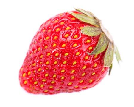 Photo for One strawberry macro photo isolated - Royalty Free Image