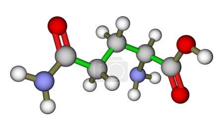 Amino acid glutamine molecular structure