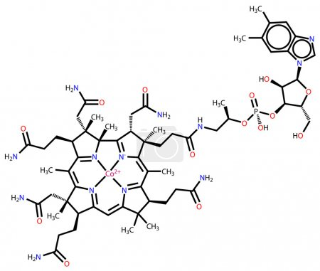 Vitamin B12 (cobalamin) structural formula