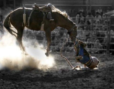 Tossed cowboy