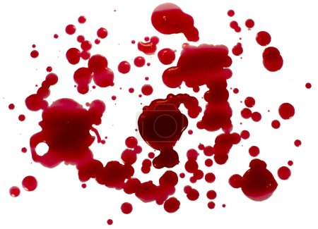 Photo for Blood droplets (splatters) isolated on white. Clipping path. - Royalty Free Image