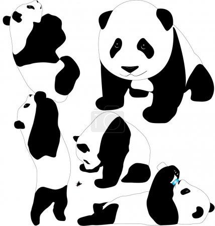 Panda babies vector silhouettes. Layered. Fully editable.