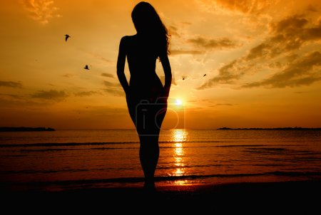 Silhouette of a sensual woman at sunrise on the beach
