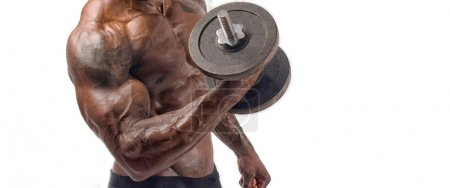 Photo for Bodybuilder training with heavy dumbbell. Strong man with perfect abs, shoulders,biceps, triceps and chest. Isolated on white background - Royalty Free Image