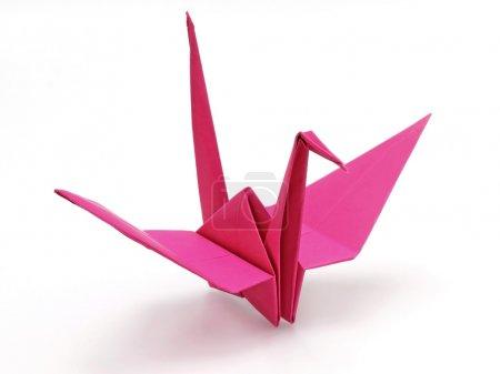 Foto de Pájaro de origami rosas sobre fondo blanco - Imagen libre de derechos