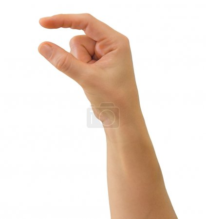 Hand to hold or drop small object