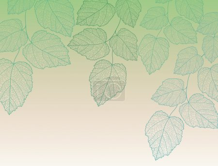Nature background with leave vector