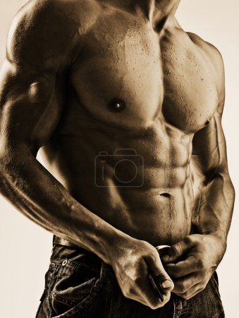 Photo for Sexy black and white torso - Royalty Free Image