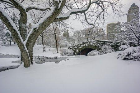 Central Park, New York City Gapstow bridge