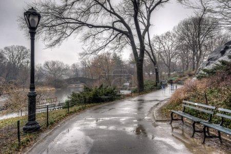 Central Park, New York City after rain storm