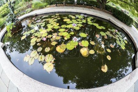 Photo pour La belle fontaine commémorative Burnett de Bessie Potter Vonnoh, un hommage à Frances Hodgson Burnett - image libre de droit