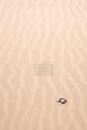 Sandy beach detail