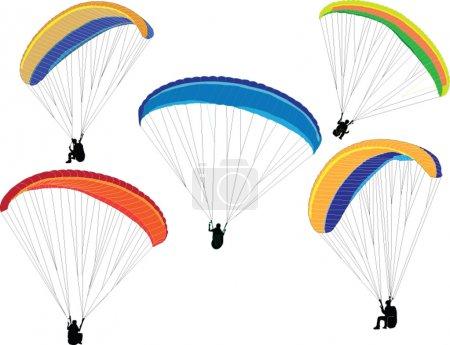 Illustration of paragliding - vector