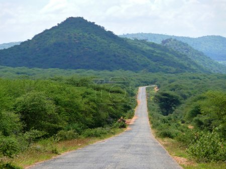 Road. Forested mountains. Landscape nature. Africa, Ethiopia.