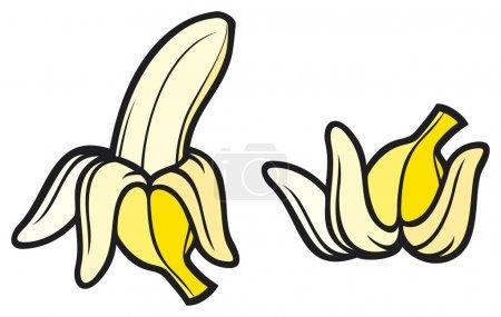 Illustration for Peeled banana and banana pee - Royalty Free Image