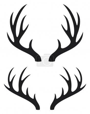 Illustration for Deer horns - Royalty Free Image