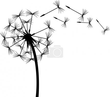 Illustration pour Pissenlit dans le vent - image libre de droit