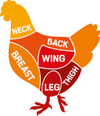 Chicken cuts diagram (chicken meat diagram)