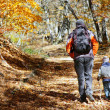 Father and son walking in autumn forest...