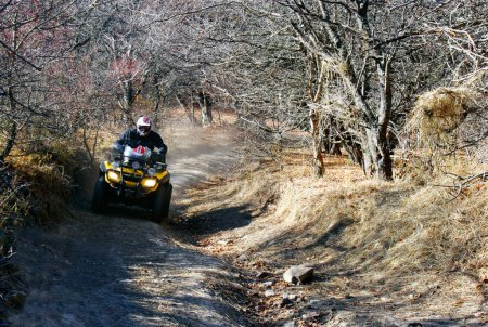 quad racer in forest en route
