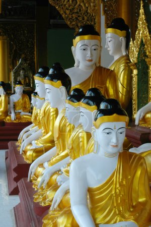 Buddha statues in a row