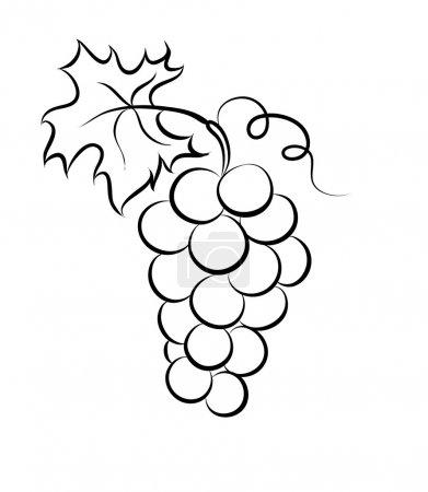 Illustration pour Illustration vectorielle monochrome du logo du raisin. De nombreuses similitudes avec le profil de l'auteur - image libre de droit
