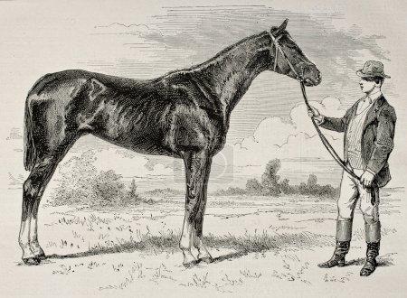 Photo pour Ancienne illustration du comte, vainqueur du prix grad de paris en 1868 créé par janet-lange et cosson-smeeton, publié sur l'illustration, journal universel, paris, 1868 - image libre de droit