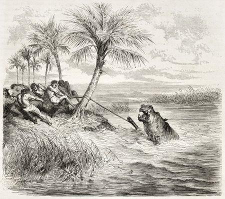 Photo pour Capture d'une vieille illustration d'Hyppopotame. Créé par Dore d'après Anderson, publié sur Le Tour du Monde, Paris, 1860 - image libre de droit