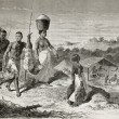Old illustration of natives African carrying food ...