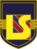 Writing L and S LS Letters Emblem Illustration Sign Symbol Logo