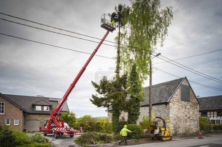 Photo pour Élagage des arbres professionnel par l'utilisation d'une plate-forme télescopique camion et bois déchiqueteuse machine - image libre de droit