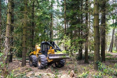 Photo pour Transport du bois dans la forêt par un débardeur de grappins - image libre de droit