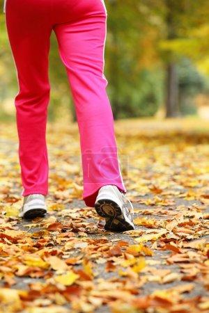 Runner legs running shoes. Woman jogging in autumn park