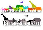 Beauty silhouette of safari animal wildlife