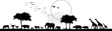 Illustration pour Illustration vectorielle de beauté silhouette de safari faune animale - image libre de droit