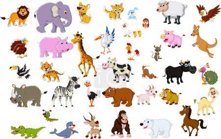 Illustration for Vector illustration of big animal set for you design - Royalty Free Image