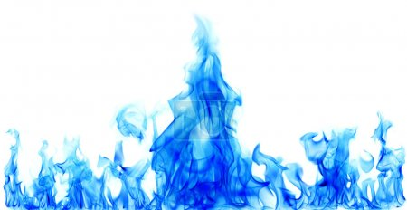 Photo for Blue fire flames on white background - Royalty Free Image