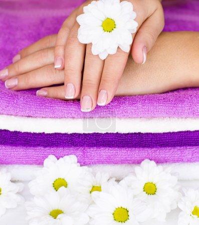 Flower on women hand