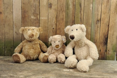 Three teddy bears seated against a wooden wall